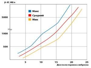 Уровень ХГЧ вовремя беременности