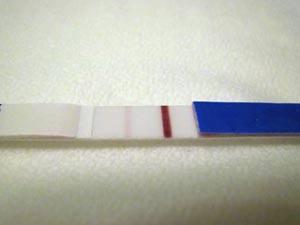 Слабая полоска на тесте при наступлении беременности до задержки