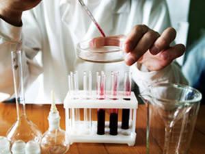 Нормы биохимического скрининга