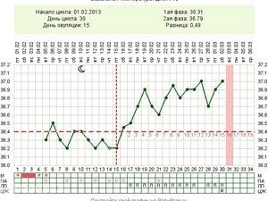График БТ при беременности