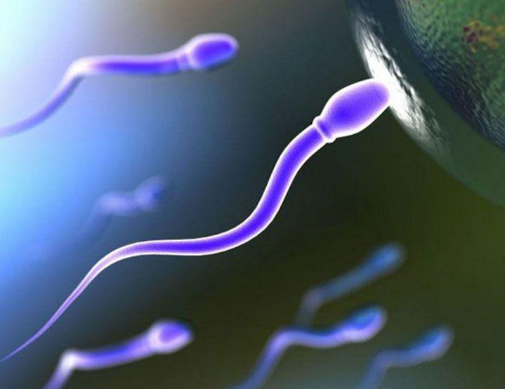 Беременность после месячных